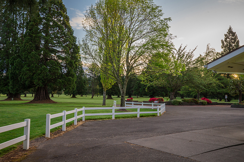 Trees and grounds outside the golf club building
